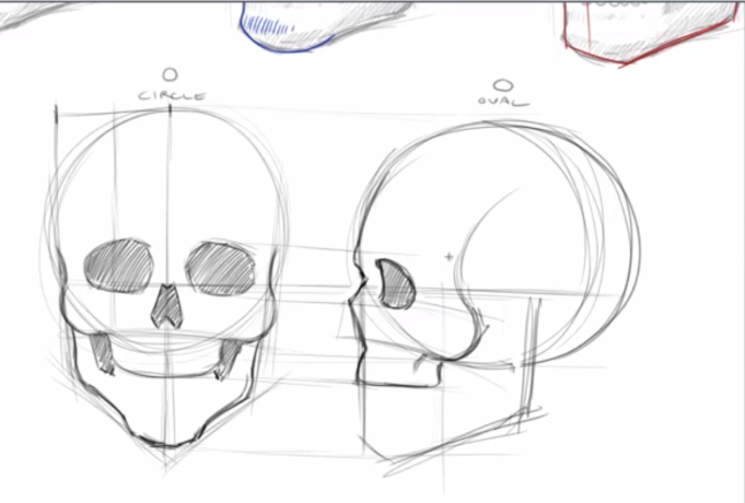 How To Draw Skulls Central